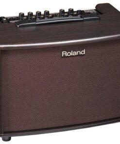 ROLAND AC-60RW ACOUSTIC CHORUS