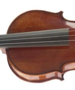 STAGG VN3/4HG VIOLIN WITH CASE