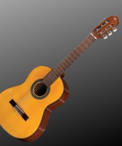 Täismõõdus kitarrid